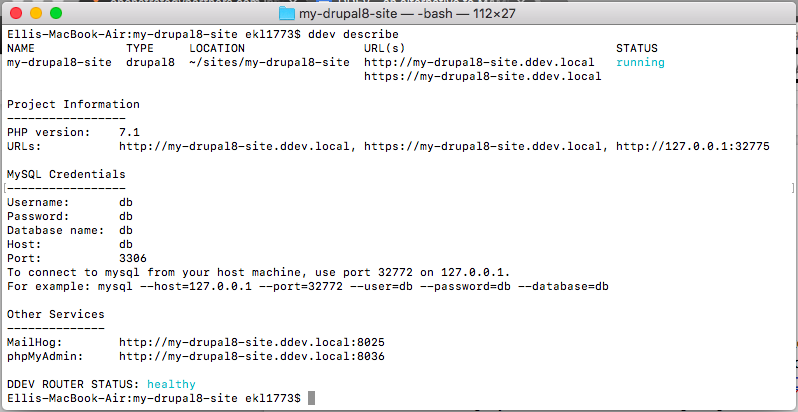 Output on command line from running ddev describe