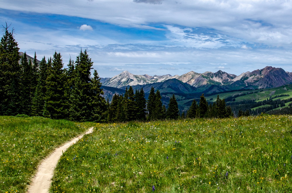 A trail leading to mountains in the distance in Crested Butte, CO